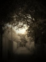 THE LONG WALK ( SEPIA ) by ANDYBURGESS
