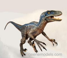 Raptor 4 feet New color by GalileoN