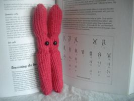 Chromosome Amigurumi by holls
