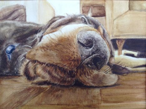 Samson Watercolor by DoaWin