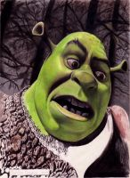 Shrek by rosan-mate