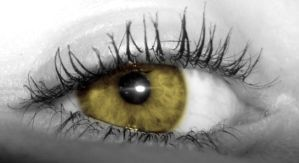 the golden eye by viveie
