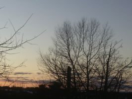 feb 9th sunset 3 by BlueIvyViolet
