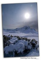 Greetings from Norway by istid