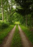 The road goes ever on... by Photopathica