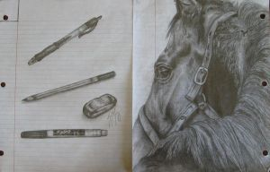 Horse, pencils by rainyrose23