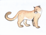 Cougar by AngelMC18