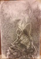 Wolf pencil drawing  by mo0ncheese
