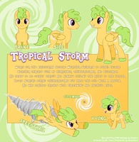AT - Tropical Storm Reference by mr-tiaa