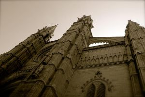 The Cathedral of Santa Maria of Palma by davbir
