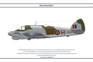 Beaufighter GB 54 OTU 1 by WS-Clave