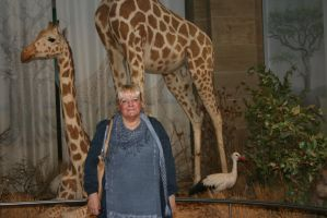 Ingeline and the giraffes by ingeline-art