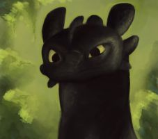 Toothless by Shadryn3