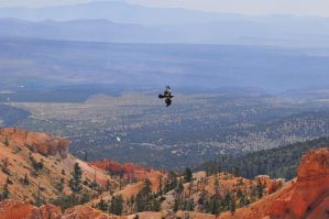 Bryce Canyon 1 by Aklime88