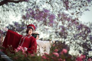1000 Cherry Blossoms by ShadowRamen