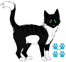 Name Price Cat -SOLD- by DemoniaTheGuardian
