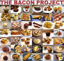 The Bacon Project by girladrencodephoenix