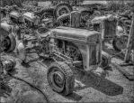 Ford Tractor Graveyard 2D by DDDPhoto