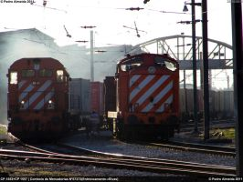 Cargo Movements at the same time 231111 by Comboio-Bolt