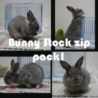Bunny Stock 1 by China-stock