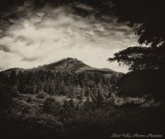 Silent Vally Mourne Mountains by BELFASTBAP