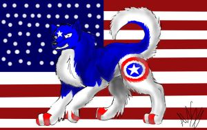 Cap'n America Dog by DockMadchen