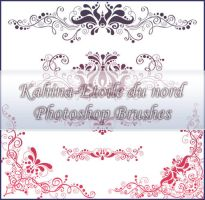 ornamental brushes set 2 by Etoile-du-nord