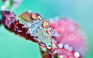 ...droplets... by jsz