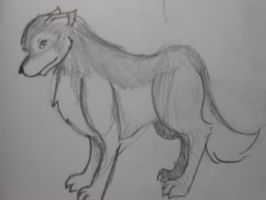 Wolf (She Wolf?) by AlexE98