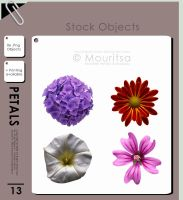 Object Pack - Petals by MouritsaDA-Stock