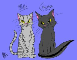 Graystripe and Millie by koala823