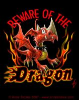 Beware of the dragon by Ironshod