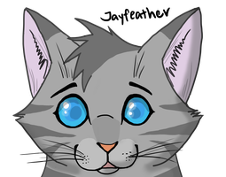Jayfeather Quick Portrait by Animalible