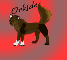 Orkide *ArtTrade, Drawn 12/16/13* by FaineSpades