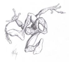 Spider-plastic-man by TuaX
