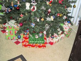 2014 Christmas Tree 16 by BigMac1212