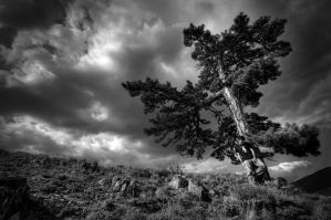 Lonely Tree and Me by ganara