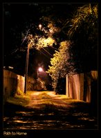 Path to Home by Sorina