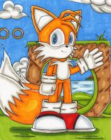 Tails2 - DragonQuestHero by TailsFanclub