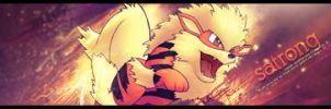 Arcanine Sig by Drake1