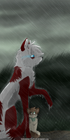 .:Exposed In The Rain:. by MetalclawTheWolf