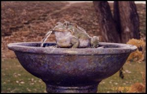 Bob the frog fountain by RandyHand