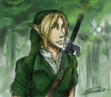 Link looks lost by shaydh