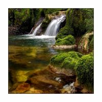 Verts d'eaux by lawra