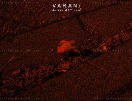 -+ dont look closer +- by Varani