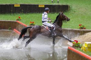 3DE Cross Country Water Obstacle Series X/24 by LuDa-Stock