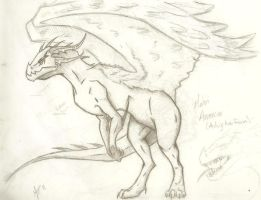 Mahri Skelwing Hollow by DarkOverlord13
