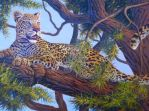 African Leopard original oil painting on canvas by WildartBD