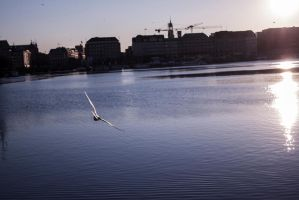 Beloved Hamburg by Kaddastrophic