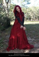 Rose Red29 by faestock